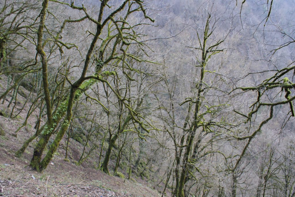 Trekking to Roudkhan Castle