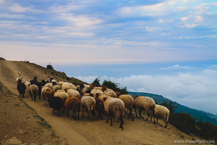 25 Photos that will make you want to visit Filband, IRAN!